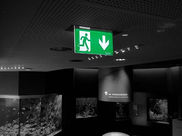 Aquazoo Löbbecke Museum Düsseldorf